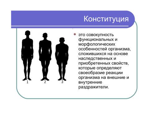 Презентация Законы Действия Факторов Среды На Организм