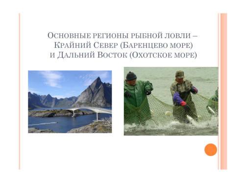 Презентация рыбная промышленность бесплатно