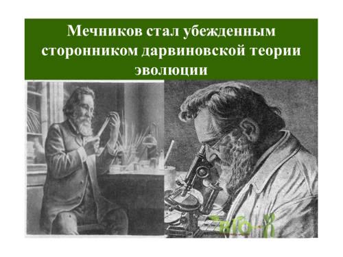 История Микробиологии Презентация
